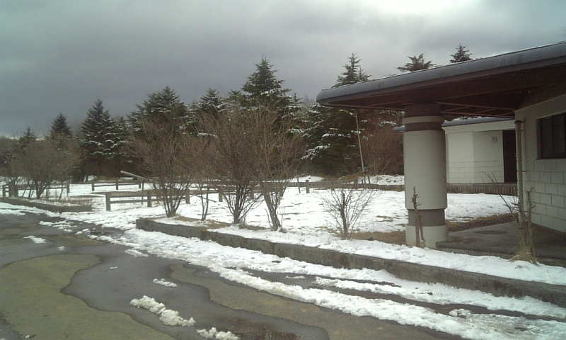 今日の水ヶ塚公園